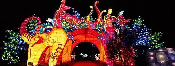 Hôtel Appia - Festival des lumières